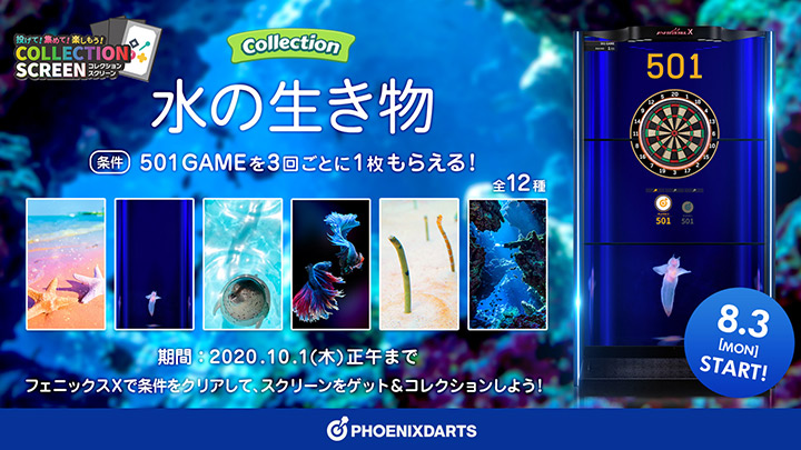 COLLECTION SCREEN